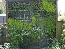 Вертикальное озеленение — шпалеры, конструкции и материалы.